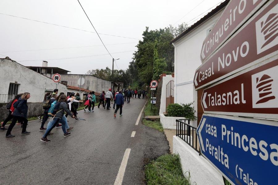 Lousã organiza Caminhada de São Martinho a pensar na XXX Feira do Mel e da Castanha
