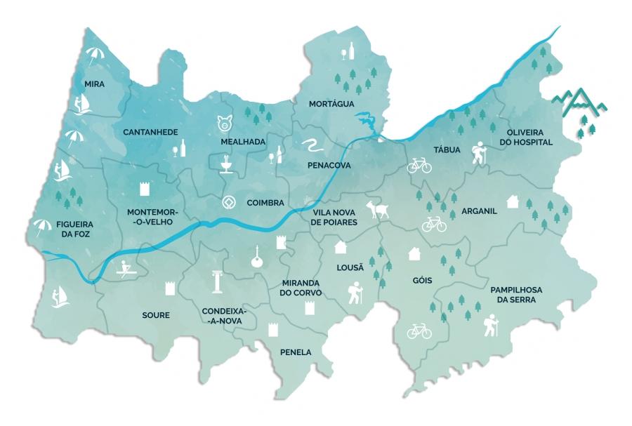 Região de Coimbra: Municípiosdisponibilizam acesso a serviços municipais online